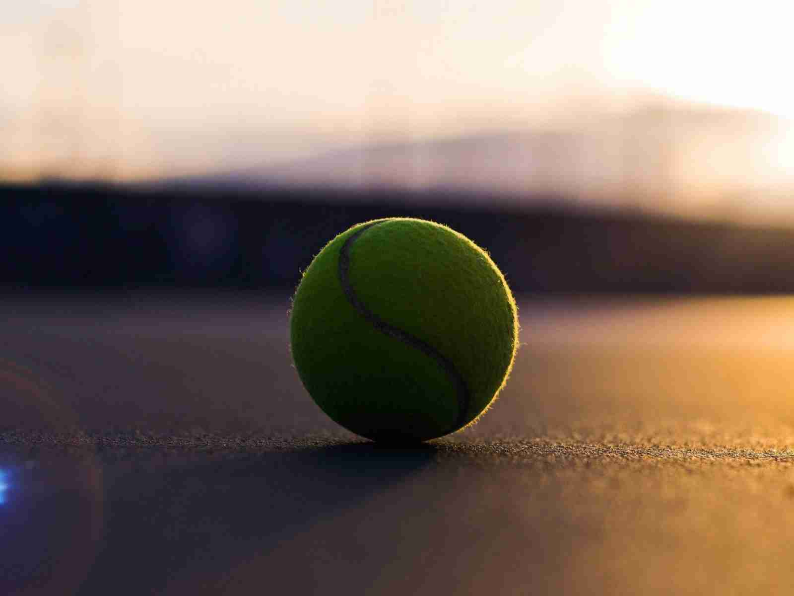 Спорт теннис теннисный мяч асфальт